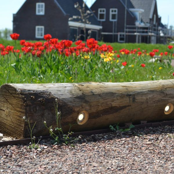 Outdoor lighting of chestnut wood, a tree stump that gives light